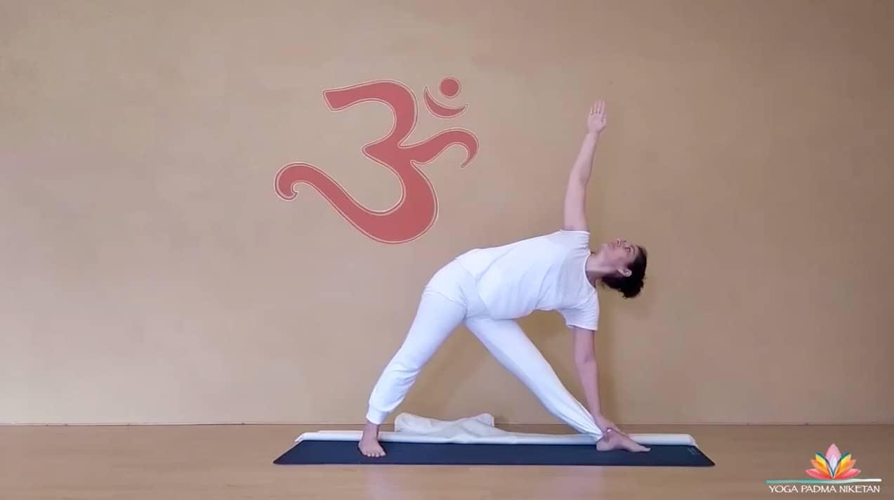 Corso online yoga