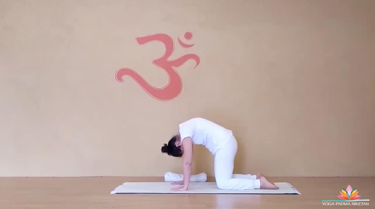 Corso video streaming yoga